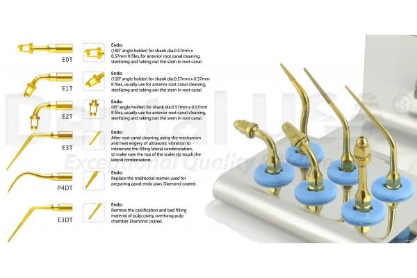 EMS Endo Kit Gold