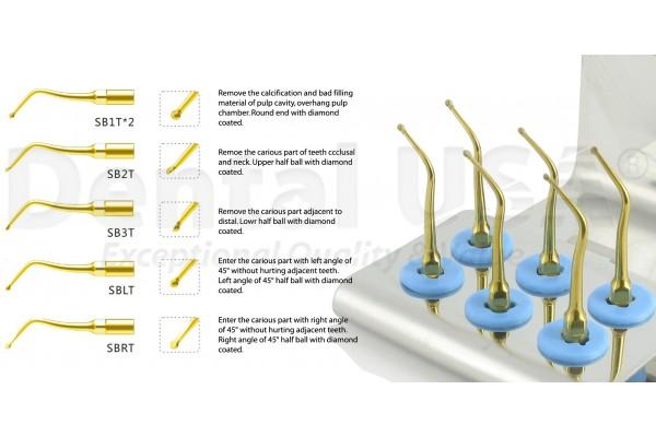 EMS Scaler Cavity Preparation Kit Gold