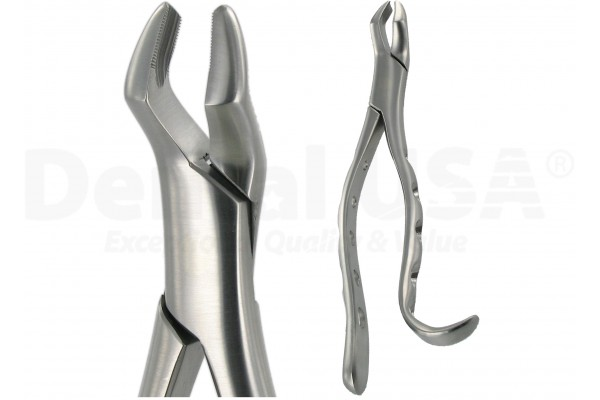 AMERICAN FORCEPS 10H UPPER MOLAR