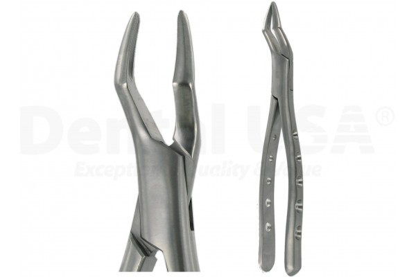 AMERICAN FORCEPS 65 UPPER ROOT