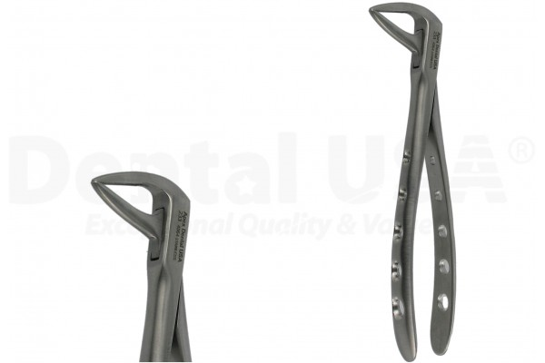 ENGLISH FORCEPS 233 LOWER ROOT