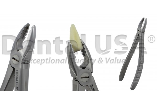 ATRAUMATIC UNVERSAL EXTRACTION FORCEP ADULT / PEDIATRIC / CHILDREN  F1P  UPPER PREMOLARS