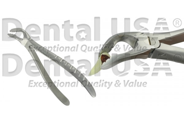 NEW EXTRACTION FORCEPS F2 LOWER PREMOLARS
