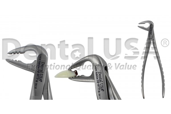 ATRAUMATIC UNVERSAL EXTRACTION FORCEP ADULT / PEDIATRIC / CHILDREN  F4P  LOWER  ANTERIOR