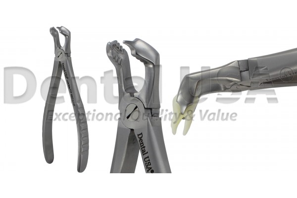 ATRAUMATIC UNVERSAL EXTRACTION FORCEP ADULT / PEDIATRIC / CHILDREN  F7CP  LOWER  MOLARS