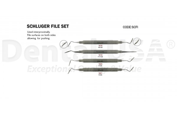 SCHLUGER FILE SET